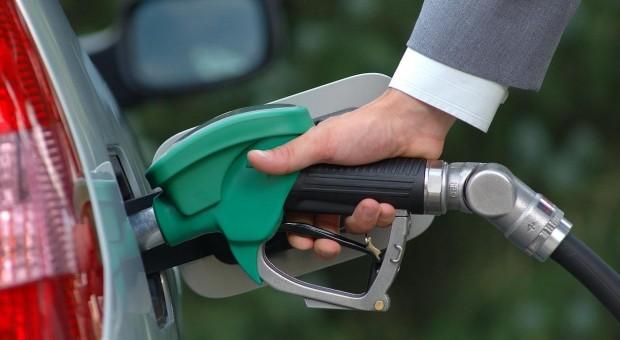 Scaderea preturilor la carburant nu este o veste buna